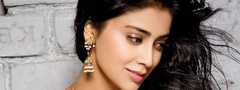 Shriya, Cute, Hot, Indian, Girl, Beautiful, Green, Saran