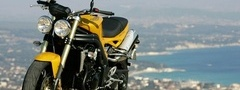 triumph, speed triple, ������