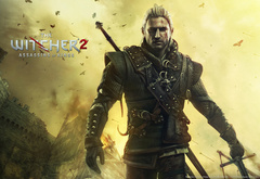 �������, the witcher 2