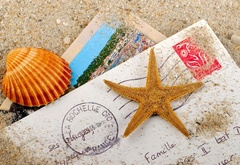 vacation, postcard, starfish, shell, envelope, stamp
