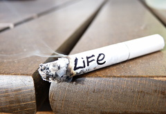 life, burn, like, a cigarette